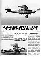 shark_l1.jpg